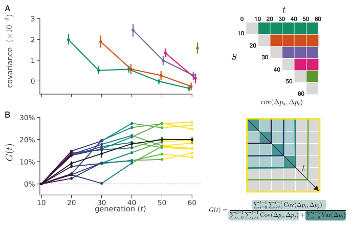 thumbnail of The Genome-wide Signal of Linked Selection in Temporal Data's featured image