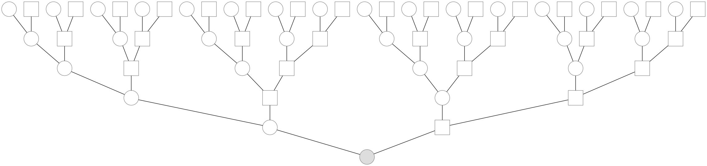A genealogy back five generations. k generations back, one has 2k ancestors. Circles indicate females, and squares males. The shaded individual is a present-day female.
